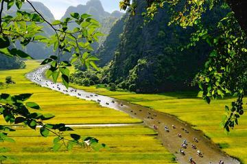 Hoa Lu Temple, Tam Coc Sampan Boat...