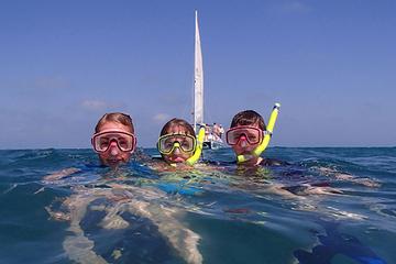 Sortie voile et plongée libre d'une journée à Key West au départ de...