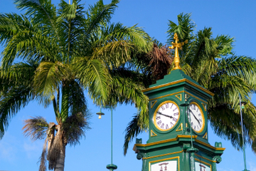 Excursión por la costa de St Kitts: Recorrido para descubrir St Kitts