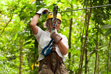 Eco-aventura en tirolina por la bóveda forestal desde San Juan
