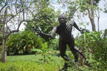 Excursión cultural de un día a Caguas desde San Juan, con Jardín...