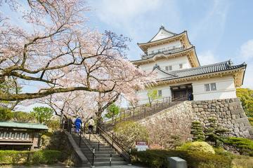 歴史城&神社ツアー