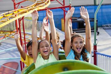 Entrée générale au parc Six Flags Mexico et programme d'observation...