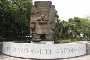 Excursão de meio dia pela Cidade do México, com Museu de Antropologia