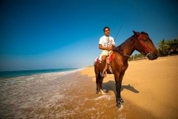 Excursión en tierra en Ixtapa: paseos a caballo por la bahía de...
