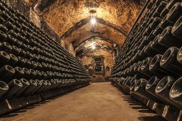 Visite des vignobles de Cavas Freixenet au départ de Mexico