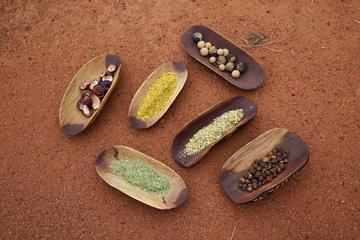 Bush Tucker (Traditional Indigenous Food) and Reptiles Tour from...
