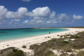 Abrolhos Island Half Day Fly and...