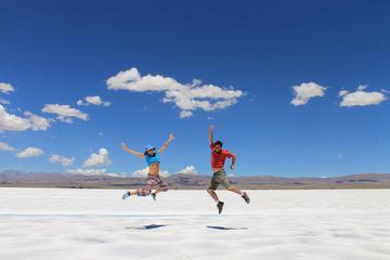 Ganztagesausflug zu den Salinas Grandes Salzfeldern von Salta aus