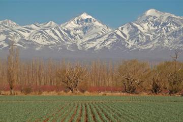 Recorrido por la ciudad de Mendoza
