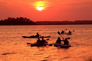 Day Trip Wilmington's Sunset Kayaking Adventure near Wilmington, North Carolina