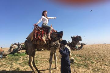 Private Camel Ride Around the Pyramids Area