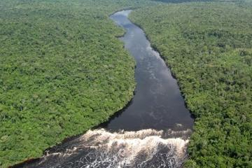 3-dagarsäventyr i Iquitos i Amazonas djungel vid Heliconia Lodge
