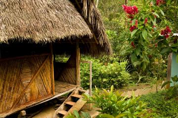 3-tägiges Dschungelabenteuer in Iquitos im Amazonas in der Ceiba Tops...