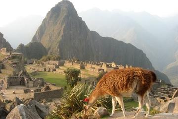7-tägige Tour durch Lima und Cusco mit Übernachtung in Machu Picchu