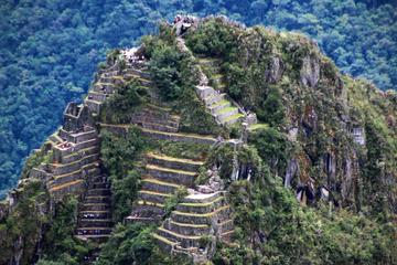 Admission Ticket to Machu Picchu and...