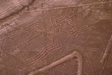 Ausflug mit dem Flugzeug zu den Nazca-Linien und den Ballestas...