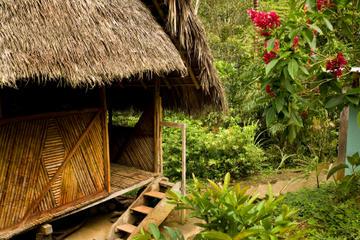 Aventura de 3 días en la selva amazónica de Iquitos en Ceiba Tops...