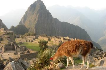 Excursão de 7 dias por Lima e Cusco com pernoite em Machu Picchu
