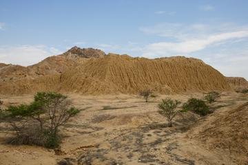 Excursión arqueológica privada en...