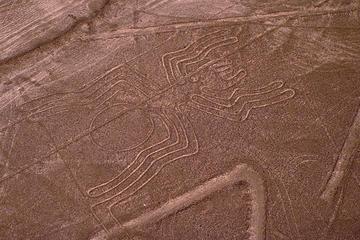 Ganztagsausflug ab Lima: Ausflug mit dem Flugzeug zu den Nazca-Linien...