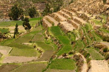 Private Tour: Arequipa Countryside...