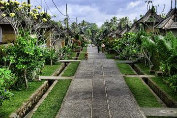 Full-day tour: Bali Traditional Tours