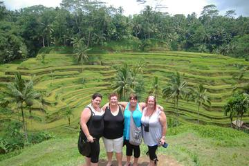 Private Tour: Ubud Day Tours with Best Driver Full-Day
