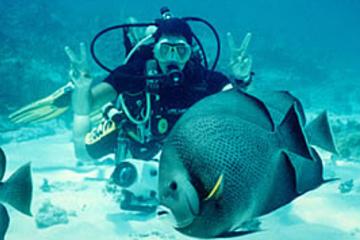 Cours de plongée sous-marine à Cancun...