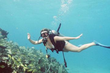 Viagem de dia inteiro para mergulho...