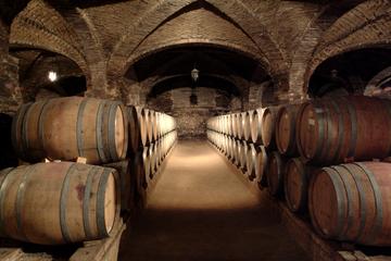 Excursão de meio dia pela vinícola Santa Rita saindo de Santiago
