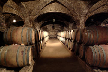Santa Rita Winery Half-Day Tour from...