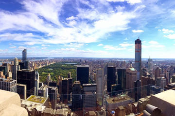 Tour van 1 dag met kleine groep door New York