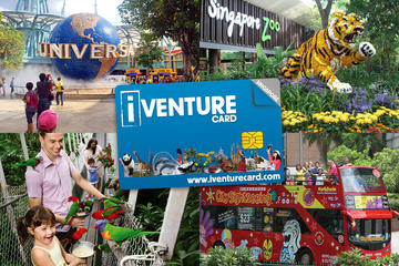 Pass per le migliori attrazioni di Singapore