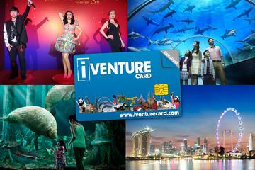 Passe flexível para atrações de Cingapura com entrada no Universal...