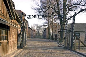 Auschwitz and Salt Mine Tours in One...