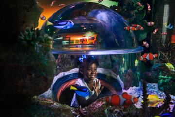 Book SEA LIFE Aquarium Arizona on Viator