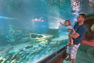 arizona-billet-dentree-aquarium-sea-life