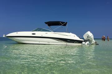 Private Half Day Stingray City, Snorkeling and Starfish Beach Tour