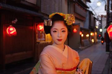 Kyoto, City of Culture Private Afternoon Tour Including Entry to Tofukiji