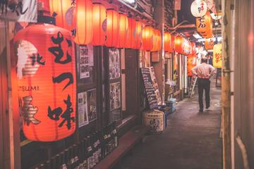 Tokyo by Night: Japanese Food Tour