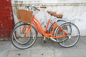 Visite en vélo en petit groupe de Kyoto