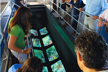 Excursão de arco com fundo de vidro em Key West com Opção para o...