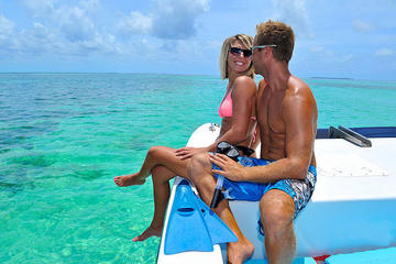 Key West Shore Excursion: Dolphin Watch and Snorkel Cruise