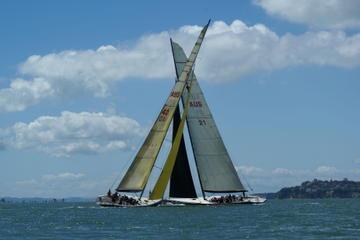 Navegación en la America's Cup por el puerto de Sídney