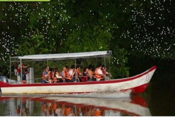 Fireflies Silver Leaf Monkey Seafood Dinner and Boat Ride Experience