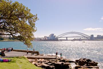 Sydney-Stadtrundfahrt in kleiner Gruppe mit Luxusbootstour durch den...
