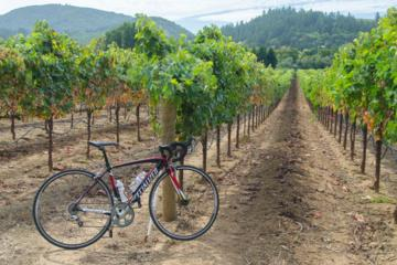 Book Dry Creek Valley Bike and Wine Tour from Healdsburg on Viator