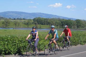 Excursão vinícola com passeio de bicicleta pelo vale do Rio Russian e...