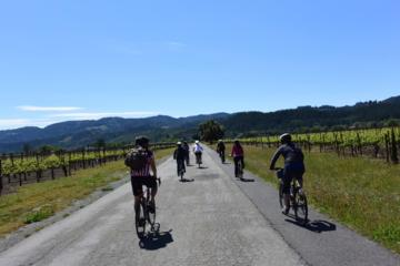 Santa Rosa Wine Country Bike Tour